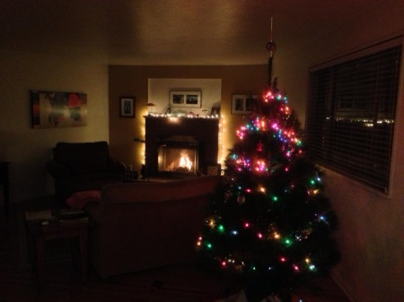 paseo.christmastreefireplace